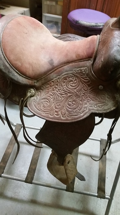 before picture of youth saddle
