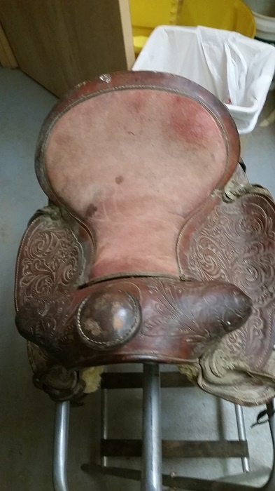 before picture of youth saddle seat
