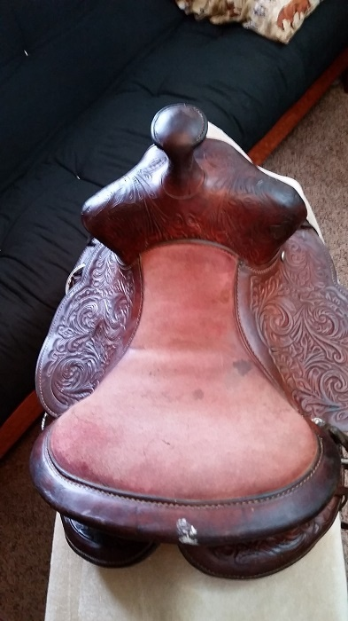 after picture of youth saddle seat